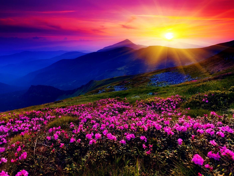 colorful-landscape-1.jpg
